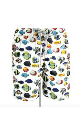AUB545 Fish's Colors Swim Trunk